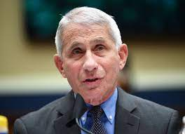 Fauci says U.S. coronavirus cases are surging because nation didn't shut  down
