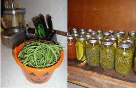 Image result for permaculture green beans, radishes peas