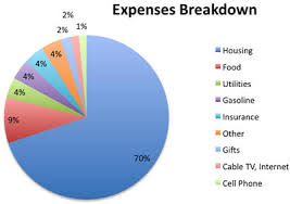 Monthly Expenses Chart How Much Do We Spend Breakdown Of Current Expenses My