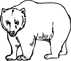 Small Picture Cozy Design Bear Coloring Pages Alaskan Grizzly Bear