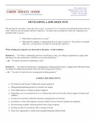 Job Objective On Resume Interesting Marketing Executive Resume Objective With Director Of 32