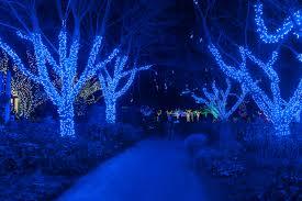 Meadowlark Gardens Winter Walk Of Lights Meadowlarks Winter Walk Of Lights Lighting Up Your