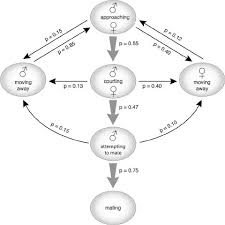 Flow Chart Of The Mating Behavioral Sequences Of Cnephasia