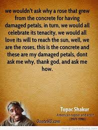 best tupac shakur quotes sayings and quotations quotlr quotes by american musician tupac shakur