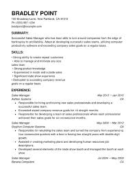 What Should A Resume Look Like Beauteous Sales Chronological Resumes Resume Help
