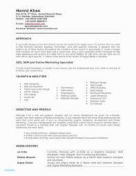 Web Developer Resume Template Unique Web Developer Resume Sample