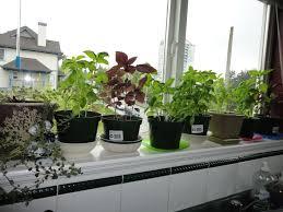 Hanging Kitchen Herb Garden Design616462 Garden Kitchen Window 17 Best Ideas About Kitchen