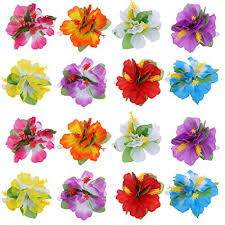 hibiscus flowers amazon com bbto 24 pieces flower hair clips multicolor hawaiian