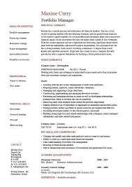 Beautiful Portfolio Nursing Examples Resume Embellishment Example