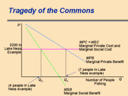 the tragedy of the commons toxipedia garret hardin s essay