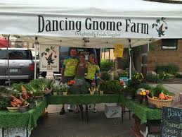 july farmers market display dancing gnome farm