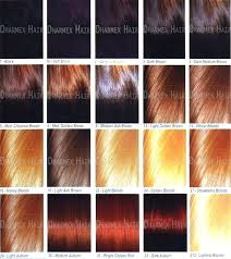 Light Red Hair Color Charts Blonde Hair Color Chart Silkscreening Me