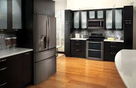 black stainless steel appliance set extraordinary moraethnic decorating ideas 25
