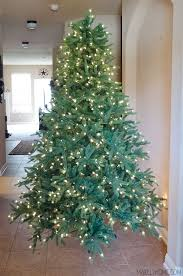 for a Well Trimmed Christmas Tree