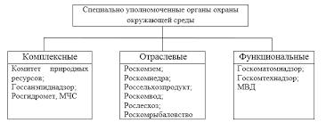 Полномочия органов государственной власти в сфере охраны  Специально уполномоченные органы охраны окружающей среды