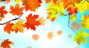 Free Download Autumn Wallpaper ...
