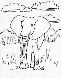 Small Picture African Elephant Coloring Page Samantha Bell