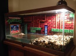 Turtle Tank Decor 17 Best Ideas About Turtle Tanks On Pinterest Pet Turtle Turtle