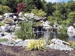 ... Japanese Water Garden Japanese Koi Pond Designs ...