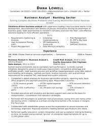 Professional Resume Writing Service Gorgeous Professional Resume Writers Cost Business Analyst Sample How Much