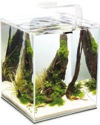 <b>Аквариум Aquael Shrimp Set</b> Smart для креветок, белый1 ...