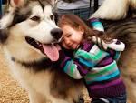 Как в стихах подарить собаку