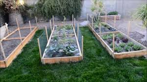 English Kitchen Garden Raised Garden Beds Vegetable Garden In Phoenix Arizona Youtube
