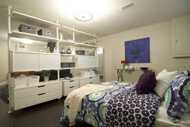 Basement Apartment Decorating Ideas Decor Cool Design Ideas