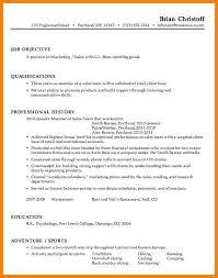 Resume It Professional Susanireland 7 Effective Resume Example Dragon Fire Defense