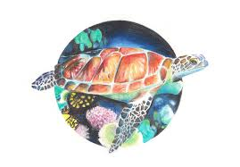 Small Picture sea turtle circular design draw color pencils by AliceMMH on