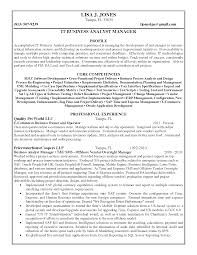Business Analyst Manager Resume Resume For Your Job Application