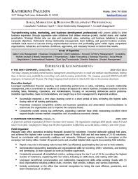 business development resume templates consultant example professional resume development community development resume best business development executive job description resume business development resume