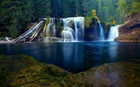 forest waterfall wallpapers hd