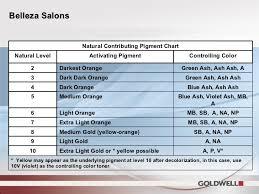 Goldwell Underlying Pigment Chart Team 3 Belleza Teach Back