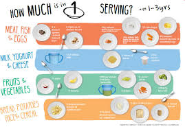 Food Portion Size Chart Getting Portion Size Right Toddlebox