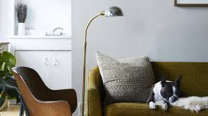olive green couch a wood and black upholstered chair and boston terrier lounging in a casey