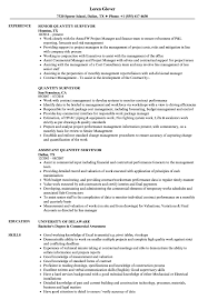 Quantity Surveyor Resume Quantity Surveyor Resume Samples Velvet Jobs 1