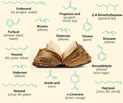 this graphic shows and old book sitting open with an array of 15 small