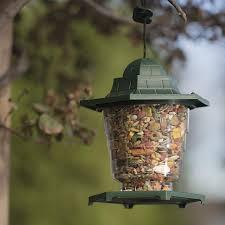 com new outdoor wild bird feeder squirrel proof garden seed food tree hanging patio garden outdoor