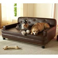 snoozer luxury dog sofas beds for dogs luxury luxury memory foam dog sofa snoozer luxury square
