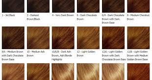 Cinnamon Hair Color Chart Cinnamon Brown Hair Color Chart Hair Color Ideas And