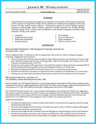 Big Four Resume Sample 60 Internal Auditor Resume Sample Best of Resume Example 24