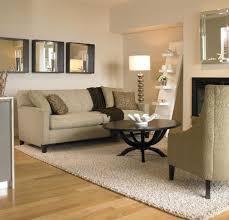 berber living room area rug