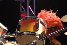 animal muppet drums gif. Contemporary Gif Animated GIF The Muppets Free Download On Animal Muppet Drums Gif E