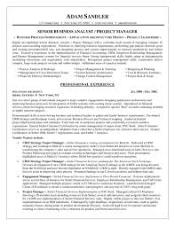 Ba Resume Sample Unique Entry Level Business Analyst Resume Examples