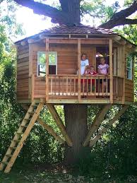 Easy kids tree houses Little Kids Kids Treehouse Ideas Brilliant Designs For Adults Best Ideas On Kids Backyard Designs Playhouse Cool Easy Saclitagatorsinfo Kids Treehouse Ideas Saclitagatorsinfo