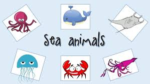 Resultado de imagen de sea animals in english