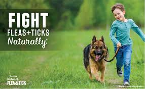 TropiClean Natural Flea & Tick Pet & Bedding Spray ... - Amazon.com