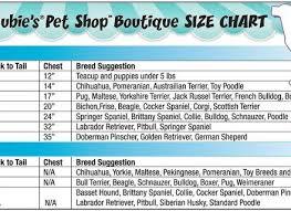 Cairn Terrier Growth Chart 77 Veracious Doberman Pinscher Puppy Growth Chart