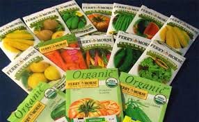 garden seeds. Modren Seeds Vegetable Garden Seeds Photo  1 Inside Garden Seeds D